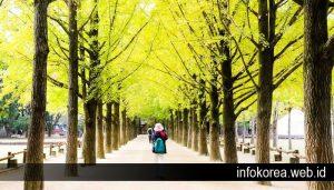 Jika Ingin Kunjungi Lokasi Syuting Drama Korea Favoritmu Datanglah Ketempat Ini